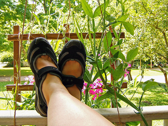 happy FUTAB, on a trellis